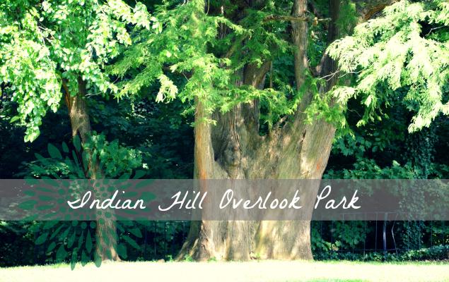 Indian Hill Overlook Park II