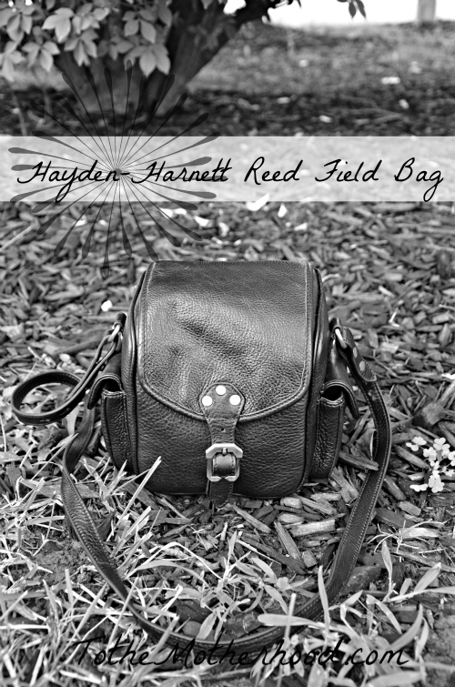 Hayden-Harnett Reed Field Bag
