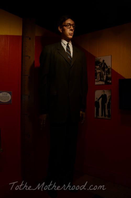 Robert Wadlow: The Gentle Giant