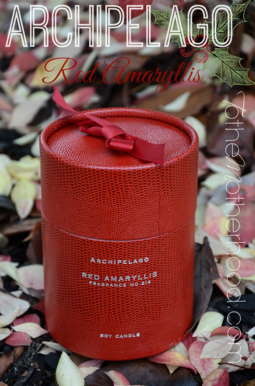 Archipelago Botanicals Red Amaryllis Box Candle