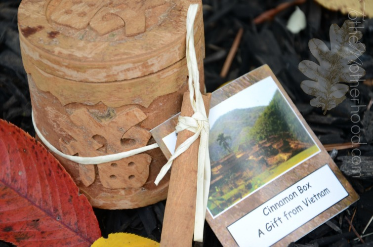 The World Vision Gift Catalog Cinnamon Box