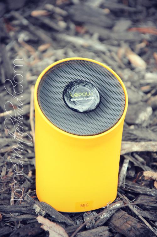 Lepow Bluetooth Speaker