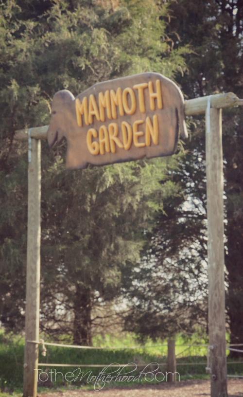 Mammoth Garden