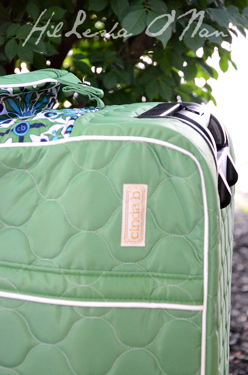 Cinda B Carry-On Rolly Verde Bonita