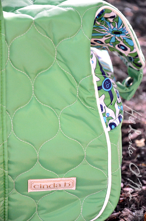 Cinda B Verde Bonita Carry-On Rolly