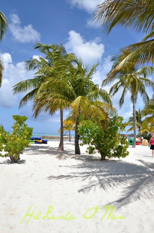 DSC 5335 Cruising to Princess Cays, Bahamas with Princess Cruises
