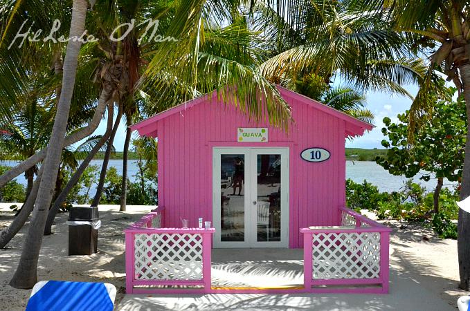 DSC 5365 Cruising to Princess Cays, Bahamas with Princess Cruises