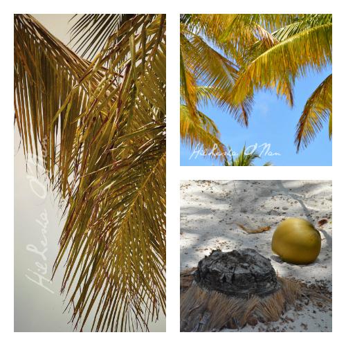 Princess Cays, Bahamas Eleuthera