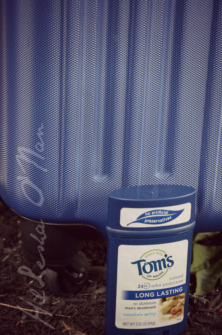 Tom's of Maine Natural Odor Protection for Men in Mountain Spring