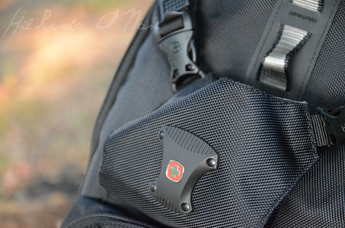 SwissGear Backpack in Black