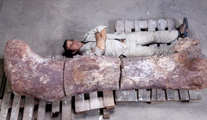 Titanosaurus-dinosaur-e1400525710757-665x385