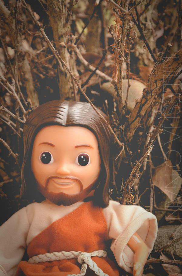 Jesus Sees Us Doll