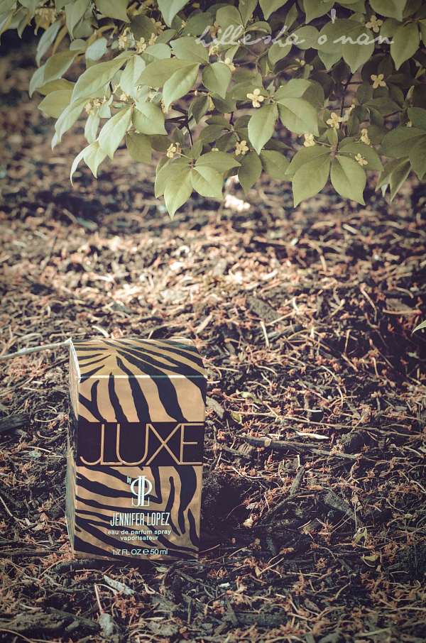 JLuxe Packaging