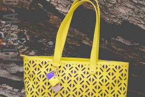 ClaudiaG Collection Luminous Tote