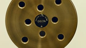 Delta H2Okinetic Raincan Single-Setting Shower Head Review