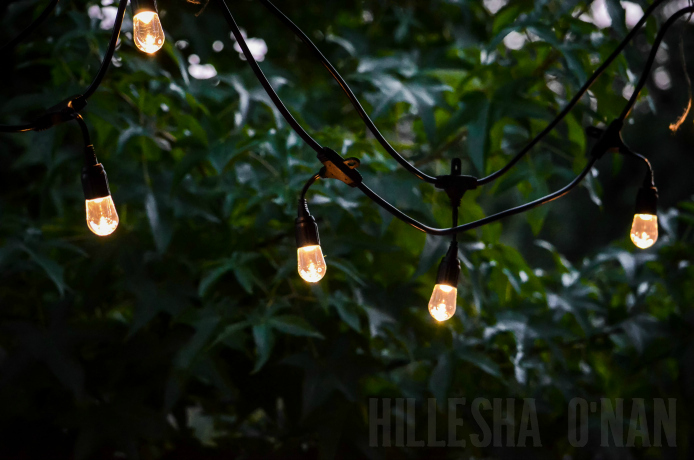 Enbrighten Cafe String Lights