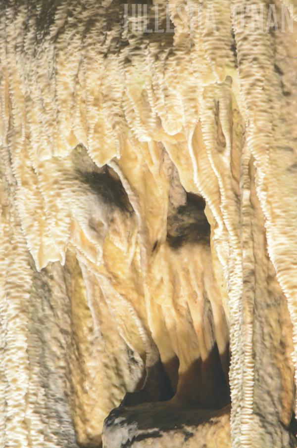 exploring-the-fantastic-caverns-in-springfield-missouri
