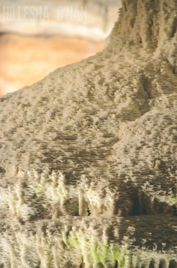 fantastic-caverns-in-springfield-missouri