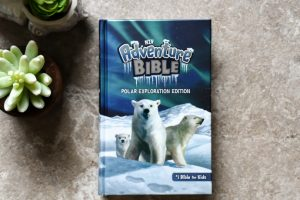 NIV Adventure Bible Polar Exploration