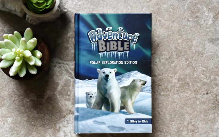 NIV Adventure Bible Polar Exploration