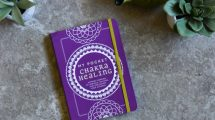 My Pocket Chakra Healing by Heidi Spear Review